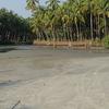 Muzhappilangad Beach