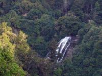 Mokau Falls
