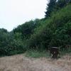 Nickel Creek Campground