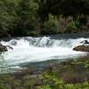 North Umpqua River