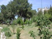 Orto Botanico dell'Universita di Lecce