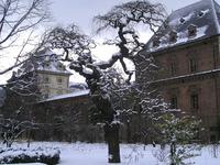 Orto Botanico dell'Universita di Torino