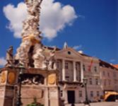 Pest Pillar