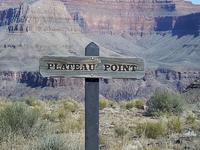 Plateau Point Trail