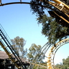 Python, The Park's First Roller Coaster