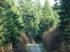 Reberce Nature Reserve