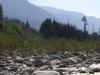 River Beas