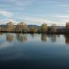 Salt River Pics - Arizona