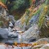Santa Anita Creek
