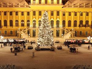 Schonbrunn Palace Evening: Palace Tour, Dinner and Concert Photos