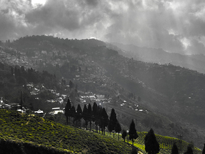 Queen of Hills - Darjeeling 3 Nights Package Photos