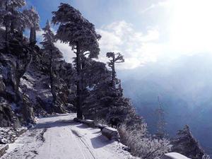 Delhi - Chandigarh - Shimla - Manali - Dharamshala and Pathankot Tour Photos