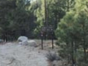 Showers Point Group Campground
