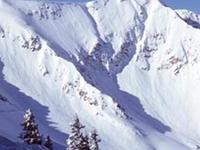 Snowbird Ski & Summer Resort