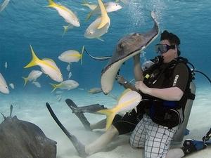 Stingray City Diving Site