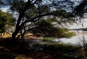 Sultanpur National Park Tourist Lodge