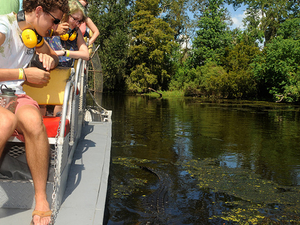 Small-Group Airboat Swamp Adventure and Plantation Tour from New Orleans Photos