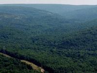Taum Sauk Mountain