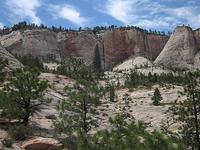 Telephone Canyon Trail