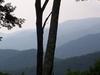 The Great Smoky Mountains Near Gatlinburg
