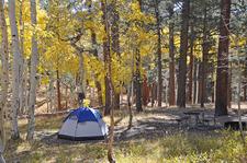 The North Rim Campground - Grand Canyon - Arizona - USA