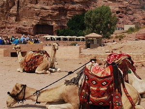 The Petra Archaeological Park