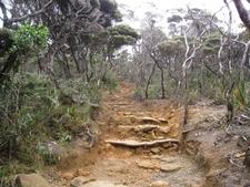 Trail To Summit Of Kinabalu