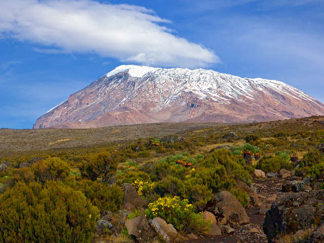 Kilimanjaro's Machame Route 8 Days