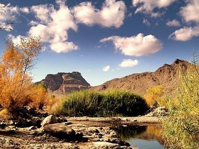View Arizona