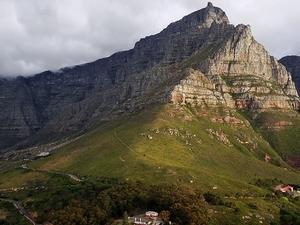 Table Mountain & Cape Town Half-Day Trip Photos