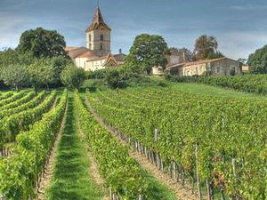 Bordeaux Wine Day Trip Photos