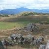 Veal Thom Grasslands