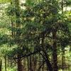 Wadernik Nature Reserve