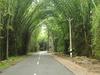 Waynad Road
