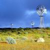 Windmills In Namaqualand