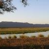 Zambezi River From Mana Pools