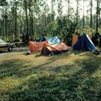 Everglades / Long Pine Key