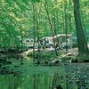 Oak Creek Campground