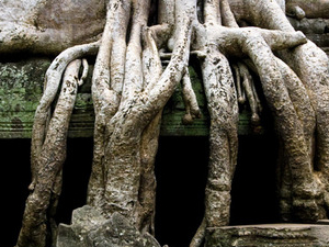 ANGKOR ADVENTURE: TREK AND BIKE  - 6 Days 5 Nights Photos