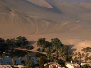 Dune Buggy & Sandboarding Tour Photos