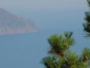 From Sevastopol to Yalta Photos