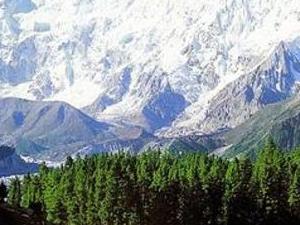 Nanga Parbat Mazeeno Pass trek