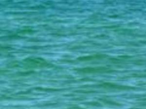 Praia de Paripueira Tide Pools. Photos