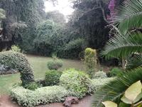 Cottage Nairobi