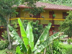 Hostal Selva y Cafe