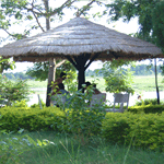 Jungle Wildlife Camp