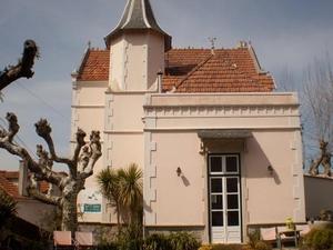Nice Way Sintra Palace