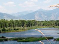 Flying Saddle Resort
