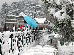 Shimla Manali Tour Package Photos