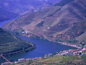Cruise Tour on Douro River Photos